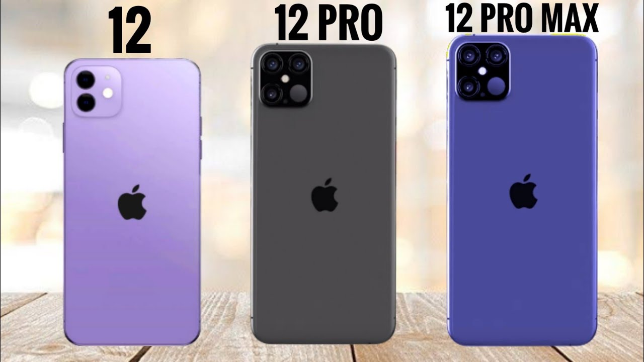 Iphone 12 Vs Iphone 12 Pro VS Iphone 12 Pro Max